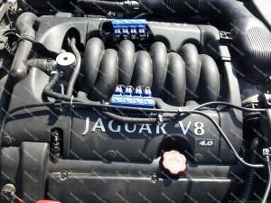 JAGUAR 4.2 V8 209kw variklis kuriam kurą dozuoja OMVL REG FAST;